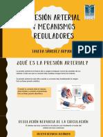 Expo fisiologia.pdf