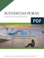 2 SUSTANCIAS PURAS.pptx