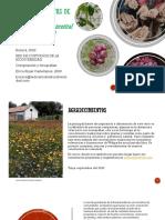 Las Plantas y Semillas de Mi Vereda PDF Version Publicada.