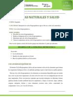 Clase_9._Ciencias_2do_curso._Ciclos_biogeoquímicos_III
