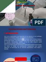Presentación 5 coloración bacteriana