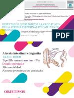 ATRESIA INTESTINAL III B
