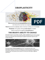 neuroplasticity blog - 09142020