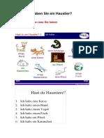 HABEN Sie Haustiere.pdf