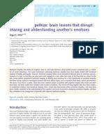 Emphaty brain lesions-Hillis 2014