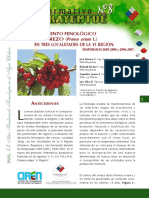 Informativo8