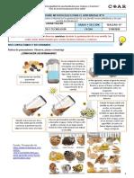DMpA 15-CIENCIA Y TECNOLOGIA- VALDIVIEZO LABAN YALENY MILAGROS