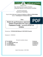 Ms.Hyd.Belhadji+Moumeni.PDF