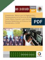 lineamientos_basicos_particulares_2010