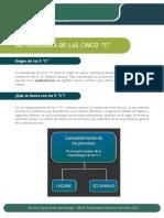 Metodologia de las cinco s.pdf