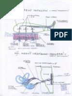 foi.pdf