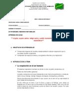 CLEI III CIENCIAS NATURALES 8 GUIA (1)