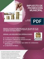 IPM - IMPUESTO DE PROMOCIÓN MUNICIPAL
