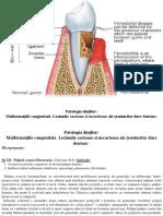 01. Patologia dinților. Malformatiile congenitale. Leziunile carioase si necarioase ale tesuturilor dure dentare.