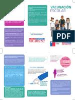 triptico vacunacion 2020.pdf