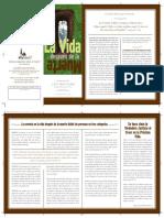 es_La_vida_despues_de_la_muerte.pdf