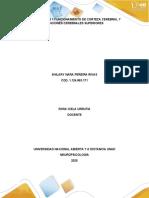 Funcionamiento-de-Corteza-Cerebral-y-Funciones-Cerebrales-Superiores.docx