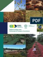 Relatorio Temático sobre - Restauração de PAisagens e Ecossistemas - BPBES 2019 80p.pdf