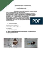 Practica-2-de-bromato-preguntaas (1)