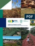 Sumario para Tomadores de Decisão _ Relatorio Temático sobre Restauração de Paisagens e Ecossistemas - BPBES 2019 22p.pdf