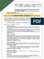 T2_TRABAJO DE CAMPO_ INGMET01 2020-5