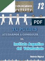 Boletin Voluntariado N° 12
