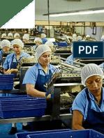 MANUAL DE ANÁLISIS DE RIESGOS Y CONTROL DE PUNTOS CRITICOS (HACCP).pdf