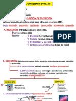 funciones vitales (1).pptx