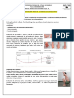 Monografia exploracion fisica sistema musculo esqueletico