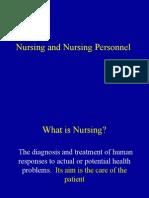 Lichtenstein_Nursing Personnel 2005