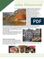 einfache-texte-ferienparadies-schwarzwald-einszueins-mentoring-inhalt-und-sprachenintegriert_83114