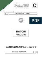 MO Madison 3 250 IE Motore ITA