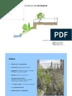 Presentación del trabajo de Restauracion de la Ribera del Río Huerva (2008)