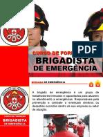BRIGADA DE INCENDIO AVANÇADA