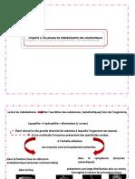 CHPTR PHASES-1-2-3-2014.pptx