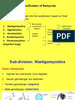 Fungi 2nd Class.pdf