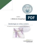 FLMNE-Mémoire-YP_compressed