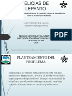Presentación Sustentación Proyecto Productivo angelica.pptx