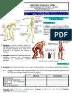 P.M. Ciclo VI Biología (2)