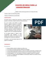 IDENTIFICACIÓN DE MENA PARA LA CONCENTRACION.docx