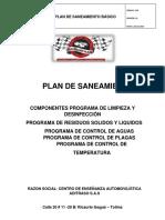 PLAN DE SANEAMIENTO