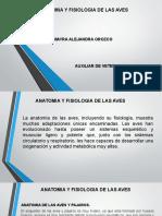 anatomia de las aves.pptx