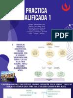 PRACTICA CALIFICADA 1- logistica portuaria.pdf