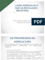 A REVOLUCAO AGRICOLA E O ARRANQUE DA REVOLUCAO
