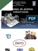 arranque_de_plantas