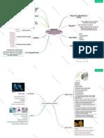 MindMap Protista - Ciri Umum Dan Excavata