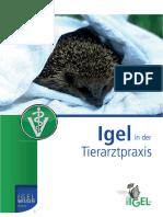IWk1_Tierarzt