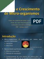 05 - Cultivo e Crescimento de Morg.pdf