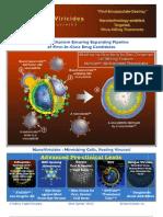 NanoViricides-Inc-Quick-Summary-4pp NNVC-2011-01-07 -sfs