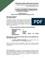 Modelo Escrito Judicial Para Ofrecer Medios de Prueba Extemporáneos - Autor José María Pacori Cari